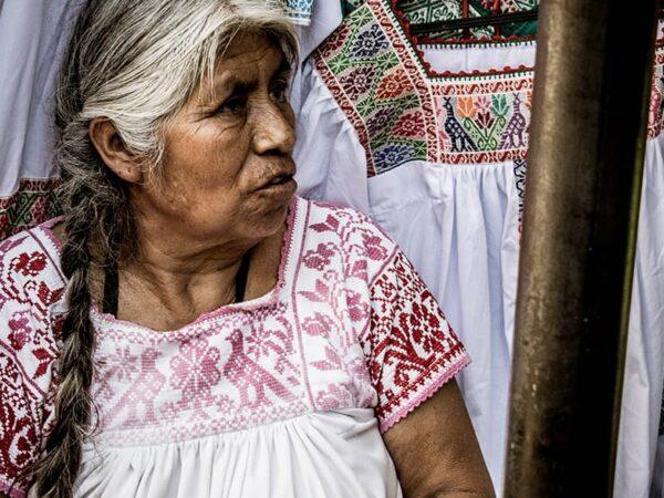 Características de Pueblos Indígenas según la Norma de Desempeño